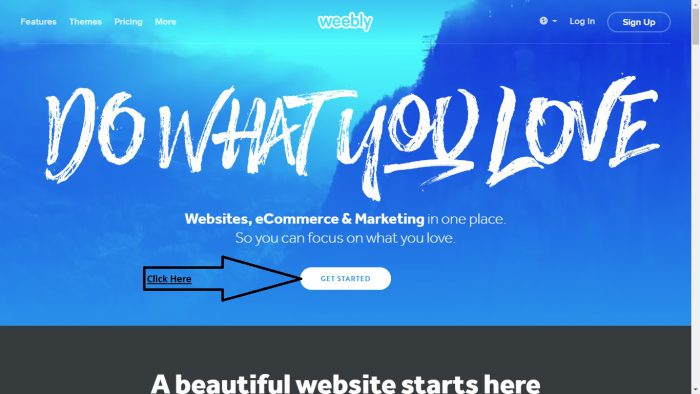 Weebly Web 2.0 submission Step 1
